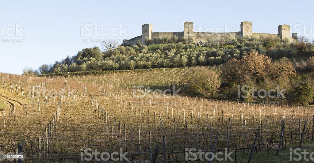 Vineyards in winter close to monteriggioni, Tuscany, Italy stock photo