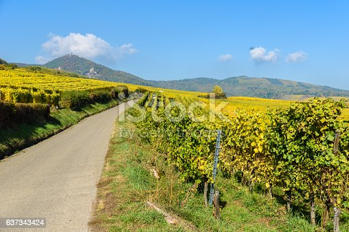 925850210 istock photo Vineyards of alsace - close to small village Hunawihr, France 637343424