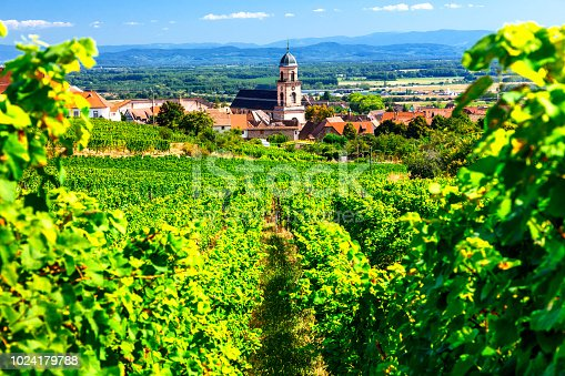 925850210 istock photo Vineyards of France. Famous Alsace region with pictorial traditional villages 1024179788