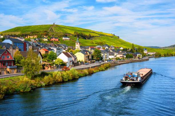 Vineyards on Moselle river in Wormeldange, Luxembourg country stock photo