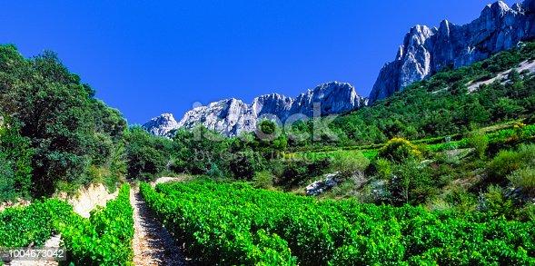 vineyards provence - cotes du rhone sunshine summer france