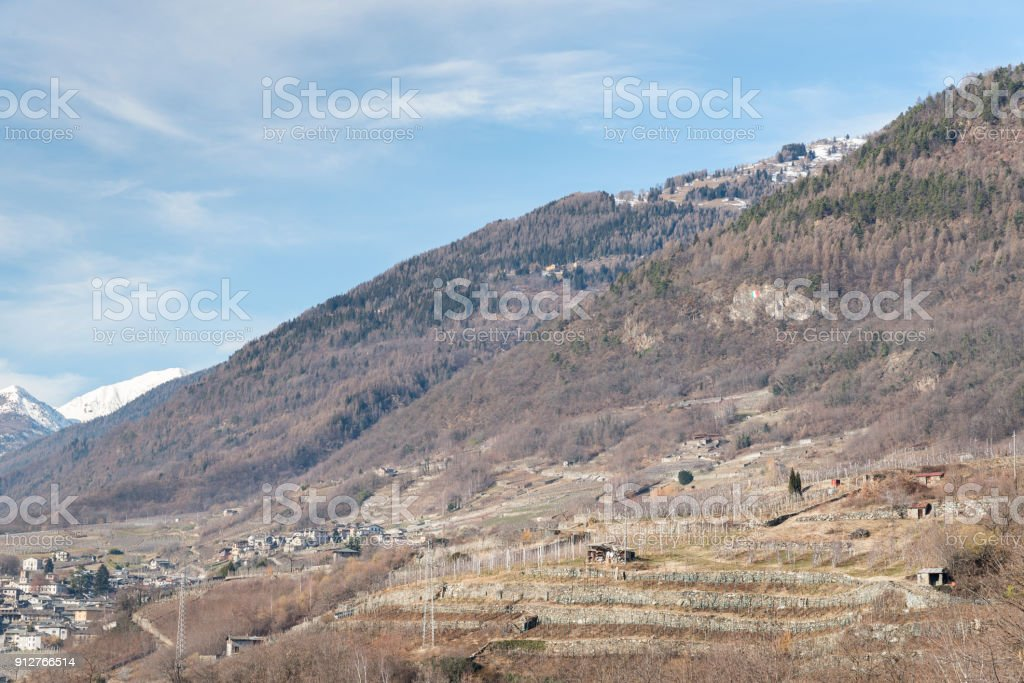 Vineyards surrounding Sondrio, an Italian town and comune located in the heart of the wine-producing Valtellina region stock photo
