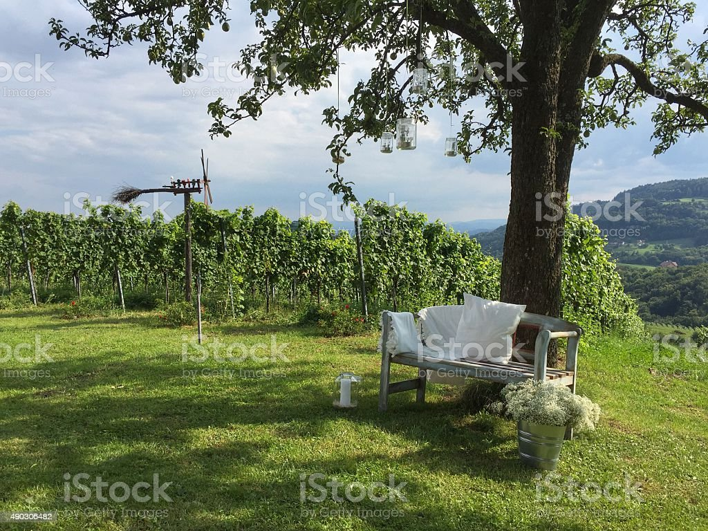 Vineyards with Klapotetz and wooden bench, Southern Styria Austria stock photo