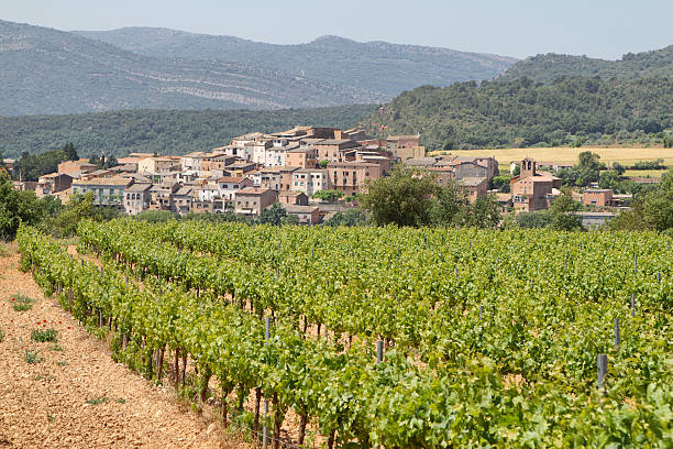 vineyards with picturesque village at background - lleida 個照片及圖片檔