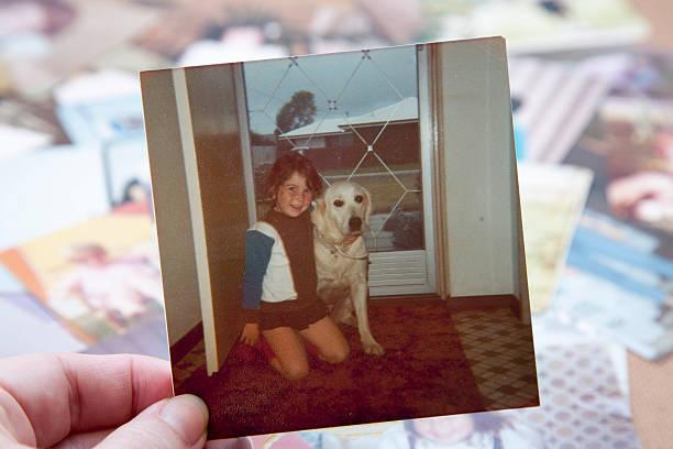 vintage 1978 foto con perro - perros abandonados fotografías e imágenes de stock