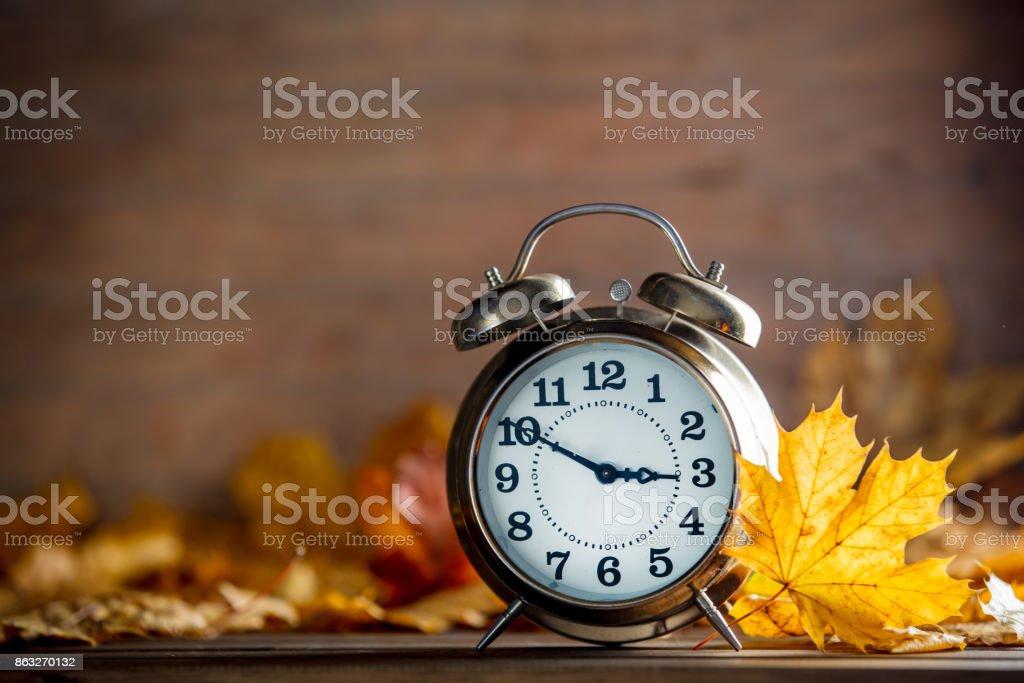 Vintage alarm clock and maple tree leaves stock photo