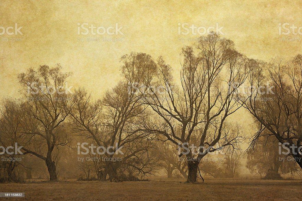 vintage autumn landscape royalty-free stock photo