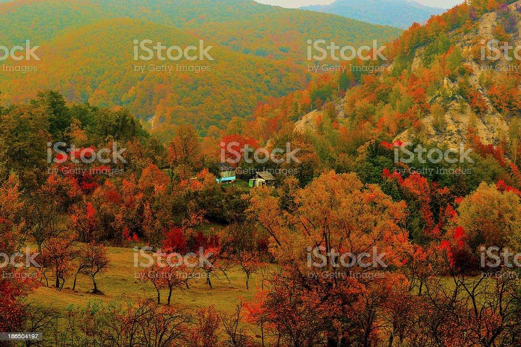 Vintage Autumn royalty-free stock photo