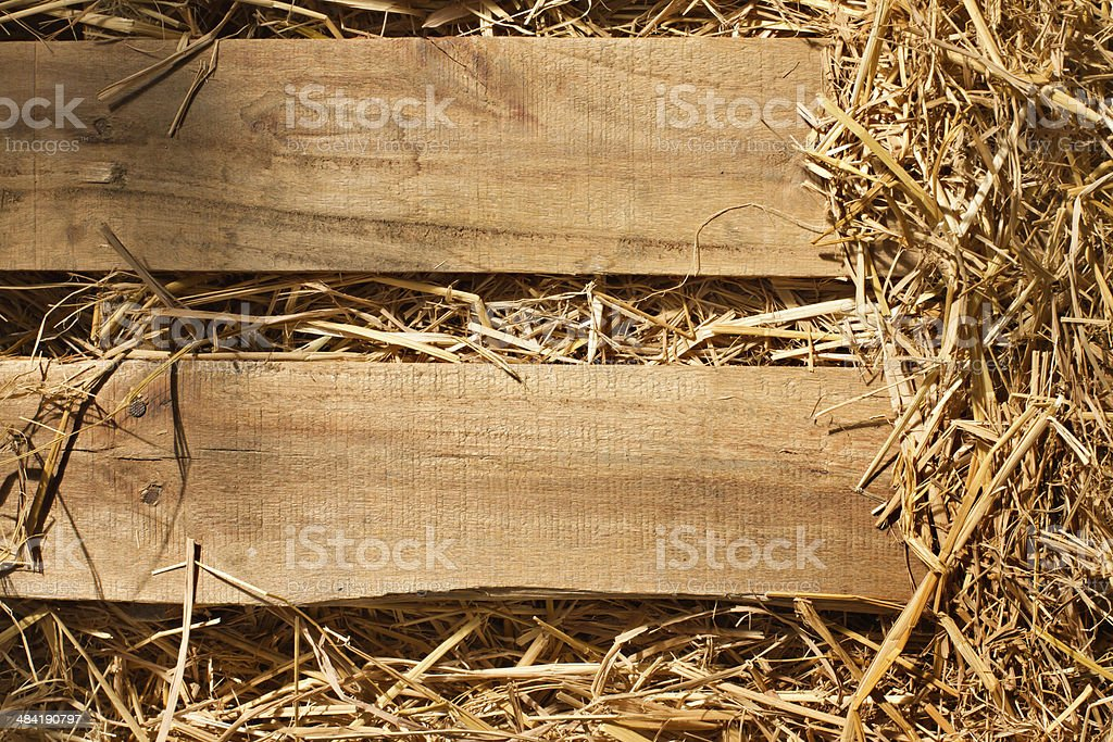 vintage background of wood plank and dry grass, hay, straw stock photo