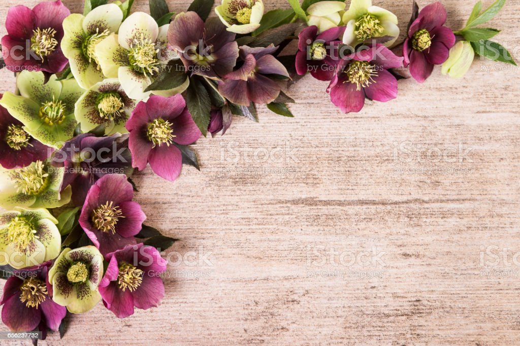 Vintage background with spring flowers arrangement pastel colors. Copy space, flat lay stock photo