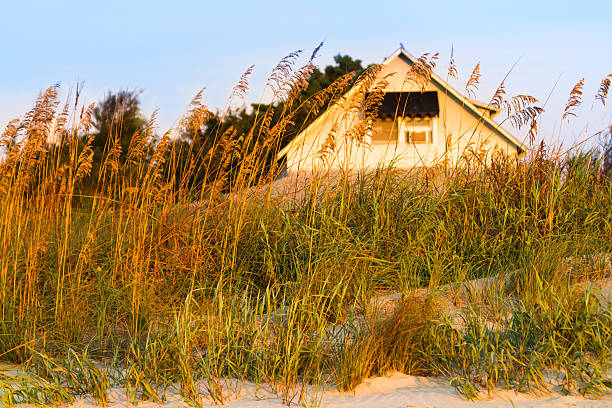 """Vintage Beach Cottage, Pawleys Island, South Carolina """"A small, 1930's vintage beach cottage behind protective sand dunes at Pawleys Island, South Carolina, a small barrier island resort community along the east coast of the U.S.A.  These sand dunes have protected this beach cottage from frequent hurricanes."""" early 20th century stock pictures, royalty-free photos & images"""