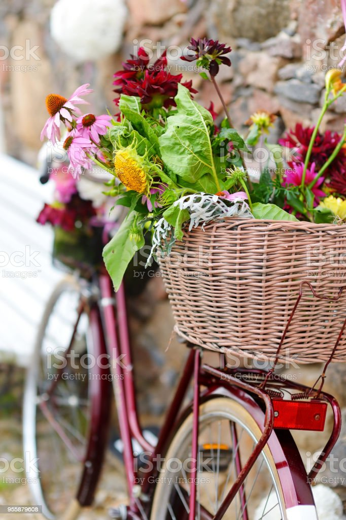 Vintage bicycle decorated with flowers stock photo