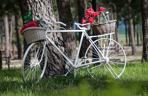 vintage bicycle in the countryside