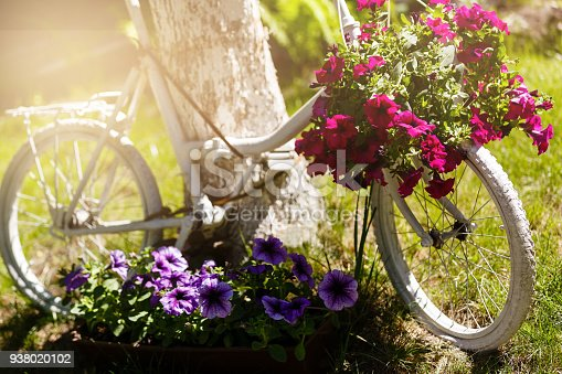 istock Vintage bicycle on the field with a bag and basket 938020102