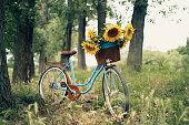 Vintage bicycle outdoors