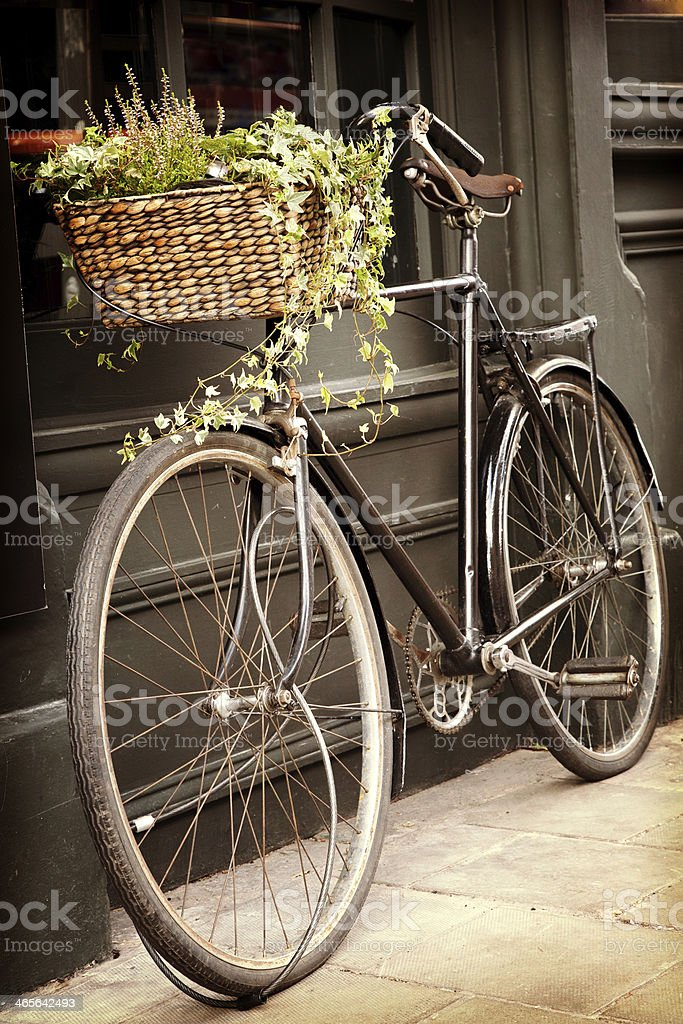 A vintage bicycle with assorted plant life in its basket stock photo