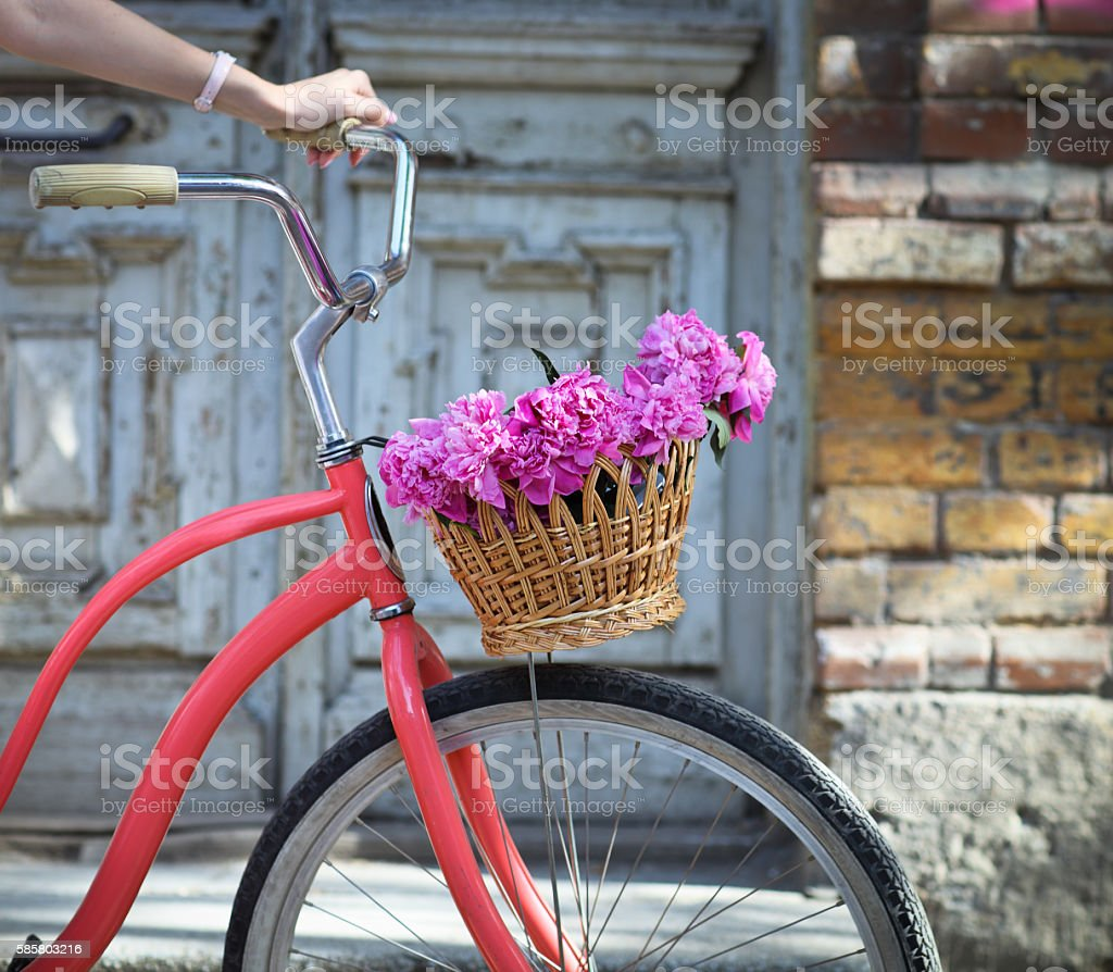 Vintage bicycle with peony flowers basket stock photo