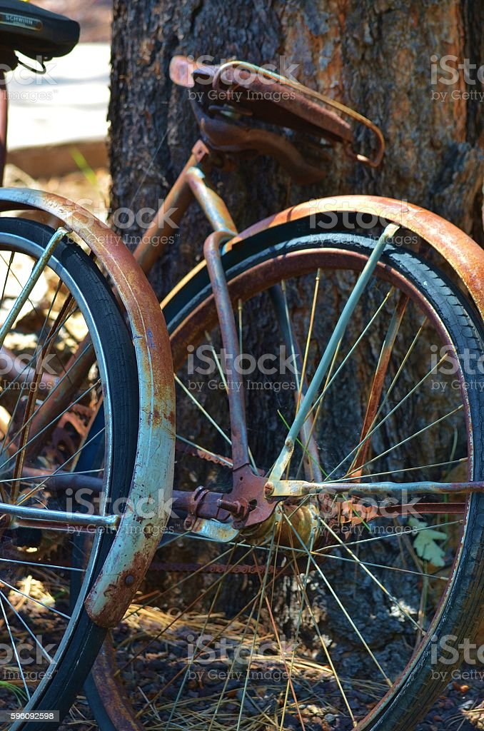 Vintage Bicycles royalty-free stock photo