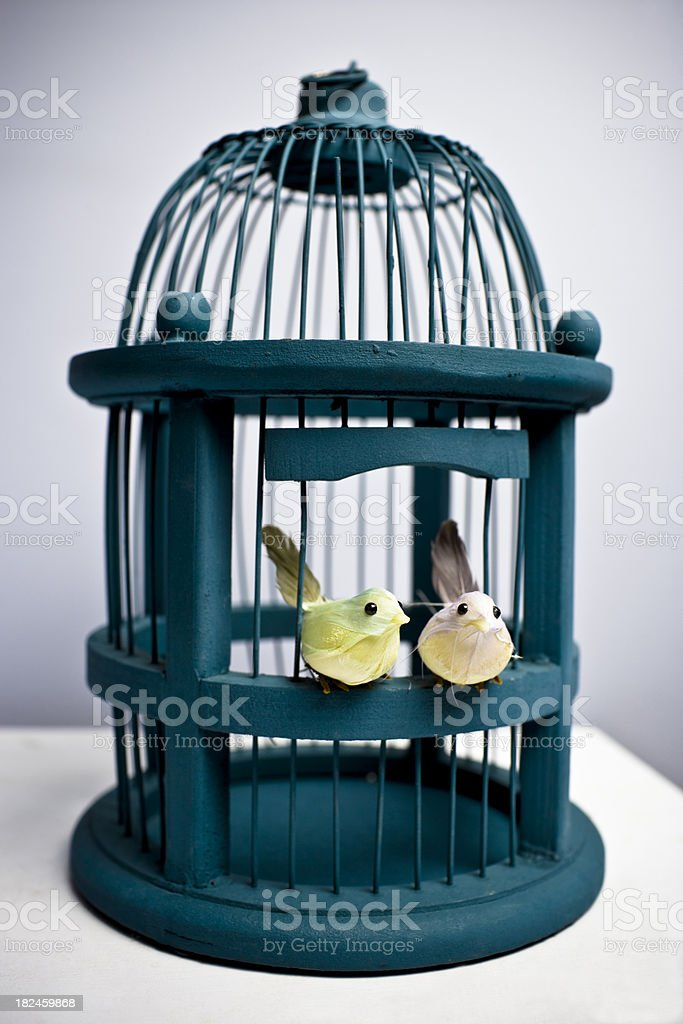 Vintage Bird Cage royalty-free stock photo