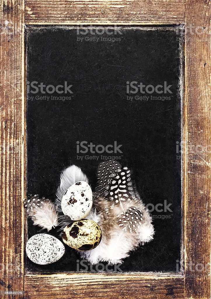 Vintage Blank wooden framed blackboard with group of Quail eggs stock photo