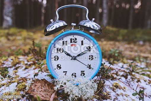 905623256 istock photo Vintage blue alarm clock in forest 1061447100