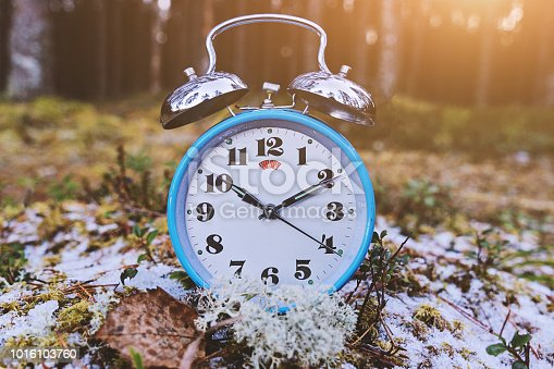 905623256 istock photo Vintage blue alarm clock on winter forest background 1016103760
