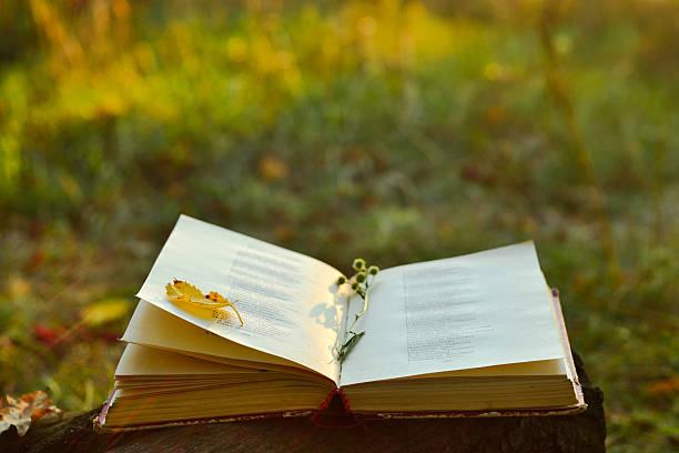 Vintage book of poetry outdoors picture id489201446?b=1&k=6&m=489201446&s=612x612&w=0&h=qnplm88ucqg gvhjbckkt ttdo4ezqmi8qgubwtldey=