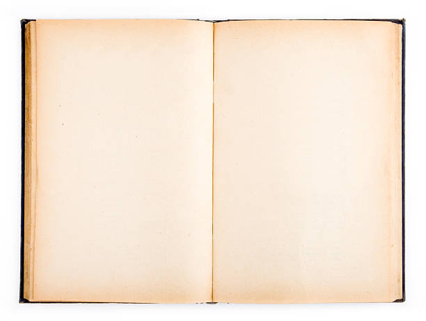 Vintage book(blank pages) stock photo