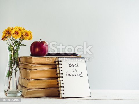 istock Vintage books, pencils, notepad with a handwritten inscription 1018374842