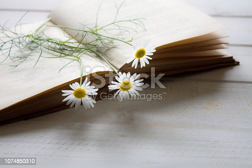 Vintage novel books with bouquet of flowers on white wooden table - concept of nostalgic and remembrance.