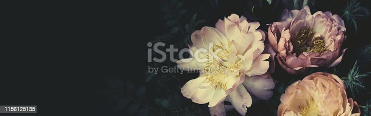 Vintage bouquet of beautiful pale peonies on black. Floristic decoration. Floral background. Baroque old fashiones style image. Natural flowers pattern wallpaper or greeting card