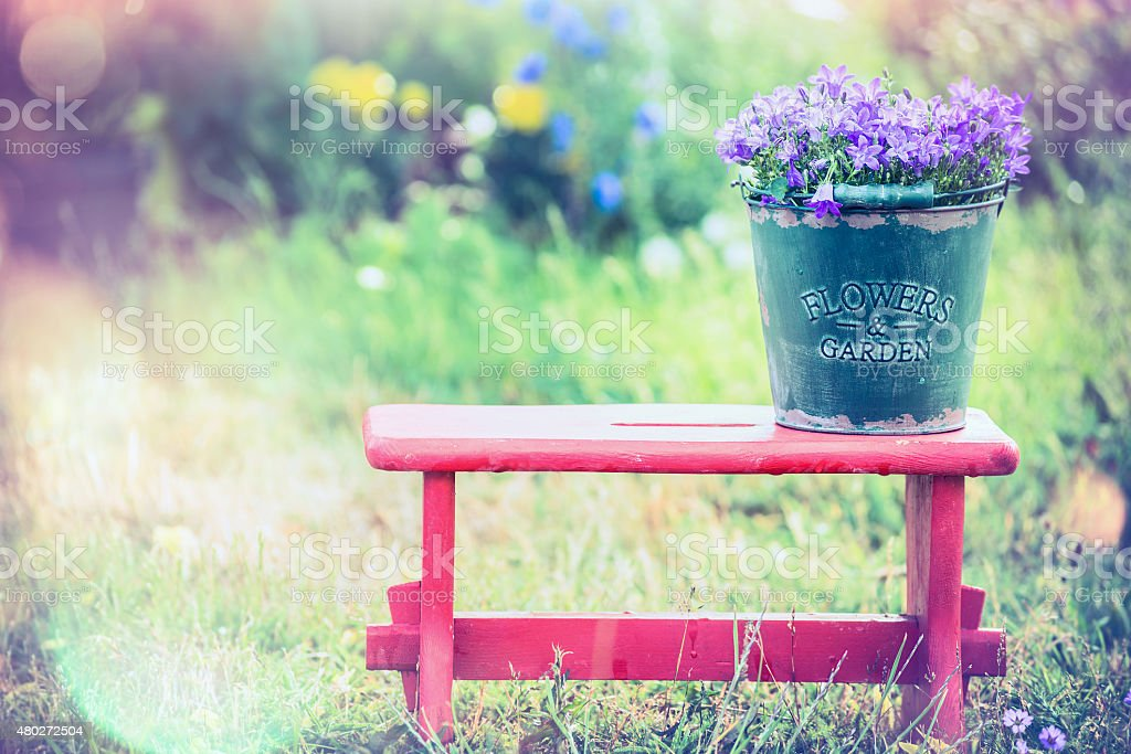 Vintage bucket with garden flowers on red little stool stock photo