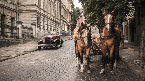 Vintage car and two horses on the streets of the old city