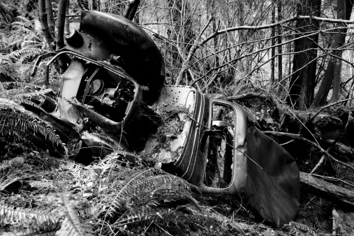 Black and white image of a vintage car wreck in the woods.