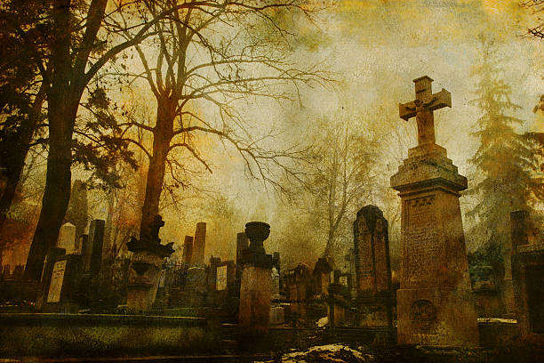 vintage cluj cemetery - cemetery stock photos and pictures