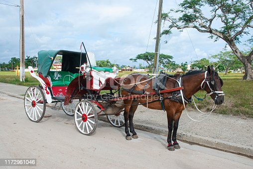 Horse carriage waiting for tourists