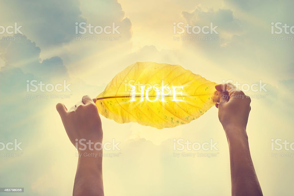 Vintage color, holding yellow leaf in the sky of hope stock photo