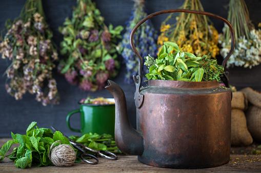 Vintage copper tea kettle, medicinal plants for healthy herbal tea and hanging healing herbs. Herbal medicine.