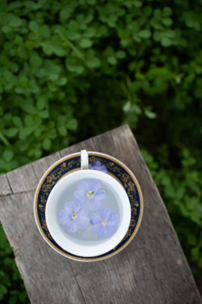 Vintage cup with saucer on a wooden bench great design for any picture id1275770162?b=1&k=6&m=1275770162&s=612x612&w=0&h=lvjdmumdkozjswgdm1k1bhm9ew7t4xcuxydm7elzwng=