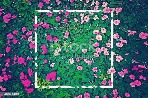istock vintage effect photography of pink flowers garden with green leaves in background pattern with creative white frame border 940871408
