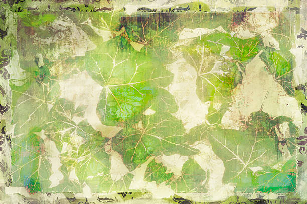 Vintage English ivy textured background with copy space for text stock photo