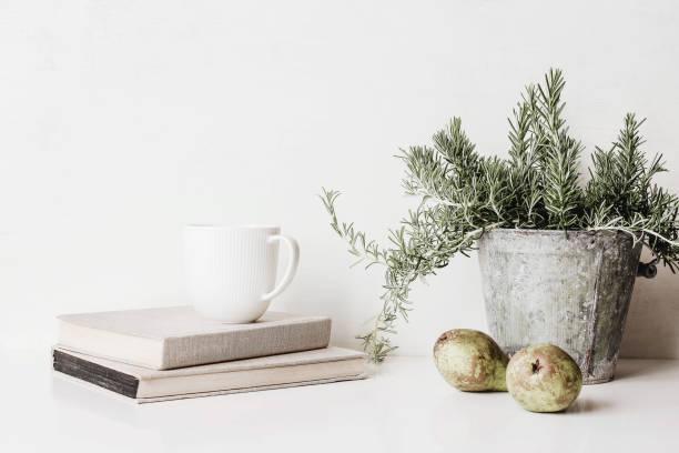 vintage-feindwerbs-szene. komposition von rosmarinkraut in alten metallblumentopf, bücher, tasse kaffee und birnen auf weißem tisch. rustikales design. wohndekoration. - küche deko blog stock-fotos und bilder