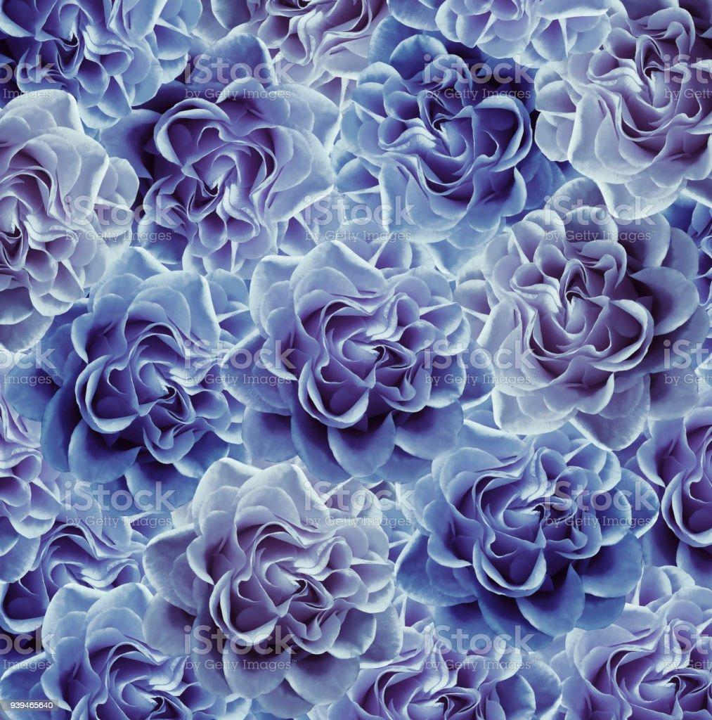 Vintage Floral Bluewhite Beautiful Background Flower Composition