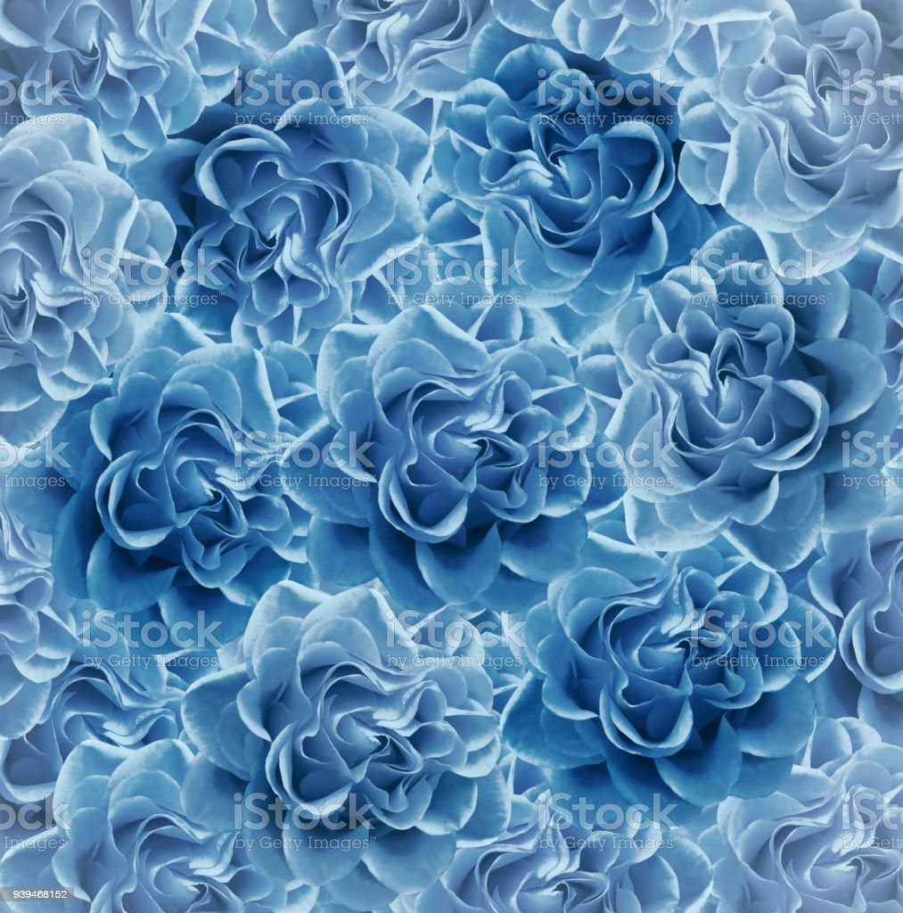 Vintage Floral Light Blue Beautiful Background Flower Composition