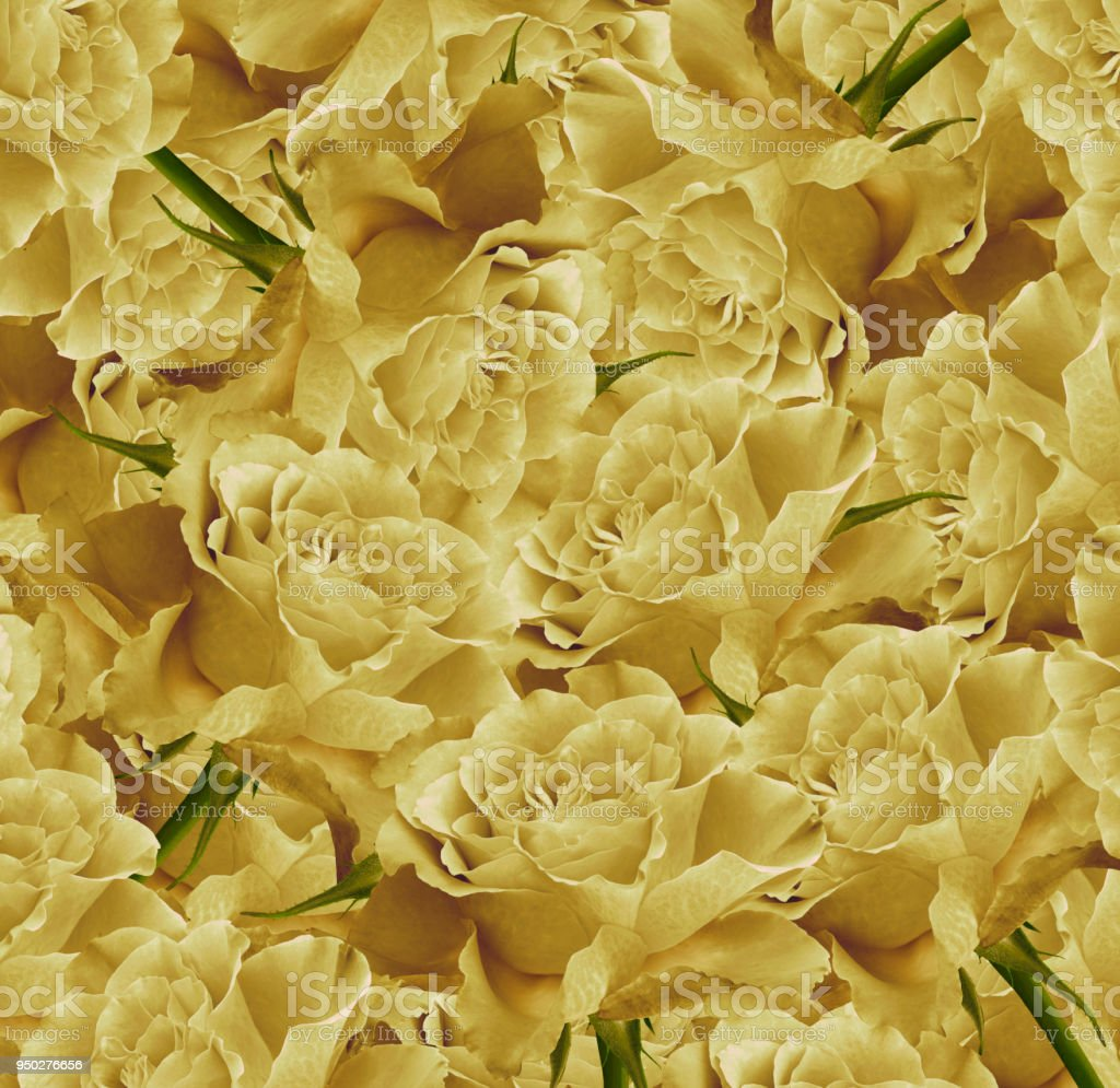 Vintage Floral Yellow Beautiful Background Flower Composition