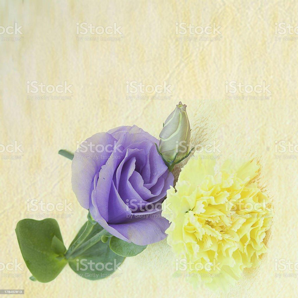 vintage flower background royalty-free stock photo
