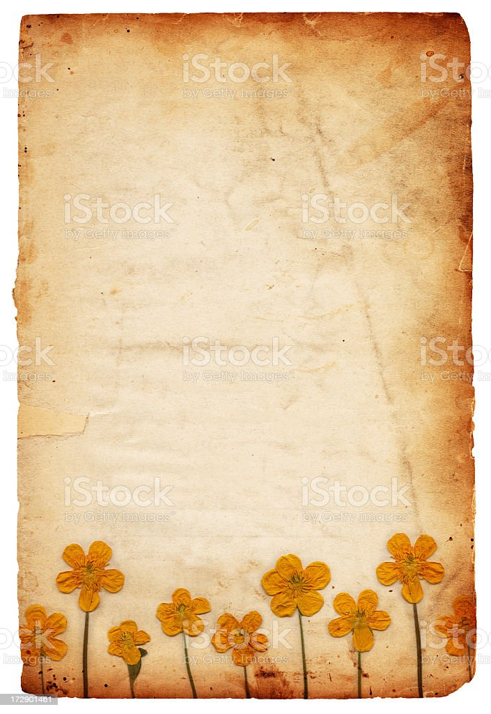 Vintage Flower Paper XXXL royalty-free stock photo