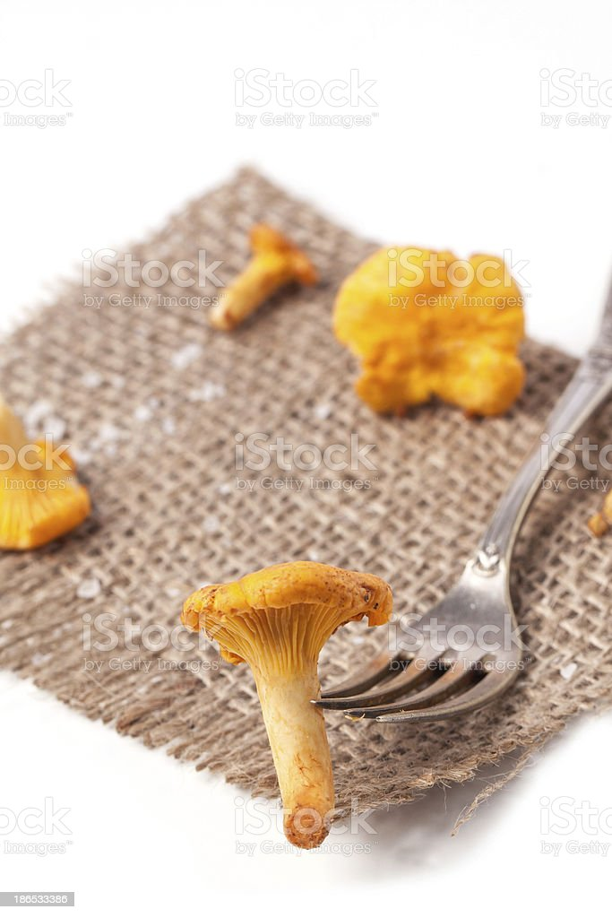 Vintage fork with mushrooms chanterelle royalty-free stock photo