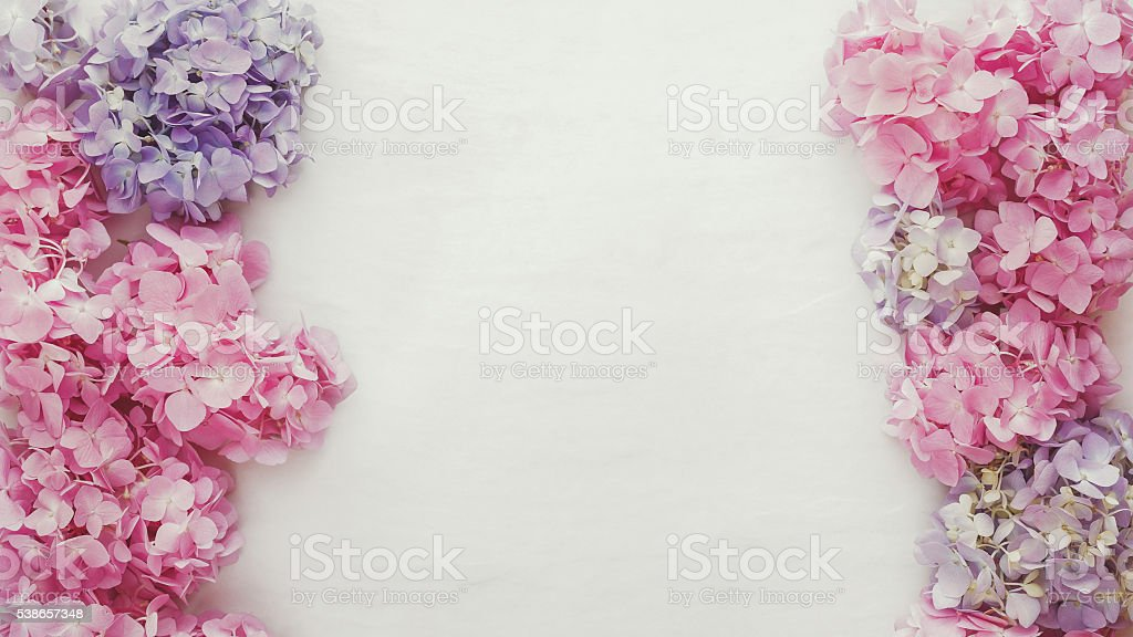 Vintage fresh hydrangea floral background stock photo
