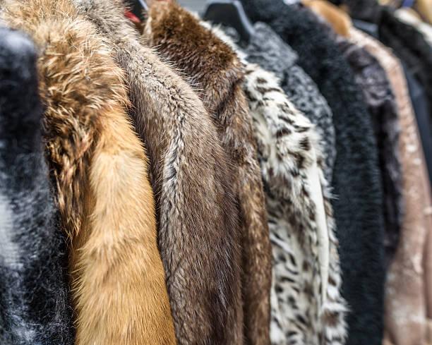 Vintage Fur Coats stock photo